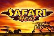 Играть в игровой автомат Safari Heat в онлайн игровом 777 ГМСлотс картинка логотип