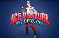 Автомат Ace Ventura в казино gmslots доступное зеркало картинка логотип